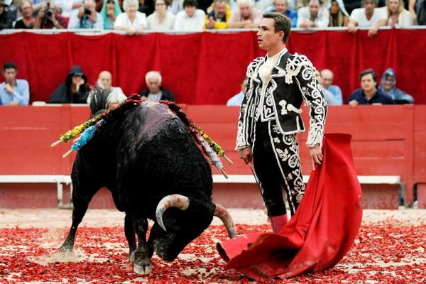 Тореадор с быком