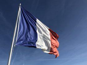 Тесты французского языка DELF и DALF