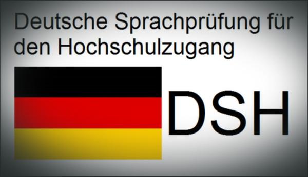 Языковый Тест DHS